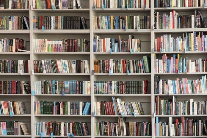 scaffali libreria (foto repertorio Shutterstock.com)