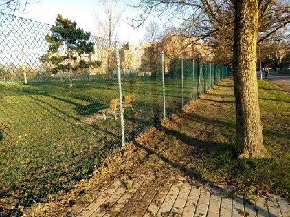 l'area di sgambamento cani di via Carlo Porta
