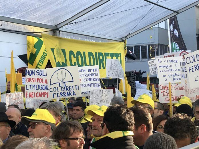 Manifestazione a Verona (Coldiretti, 2020)