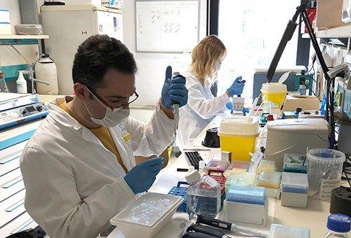 Il Dott. Amin Ravaei (Genetica medica Unife) impegnato nelle indagini genetiche e molecolari